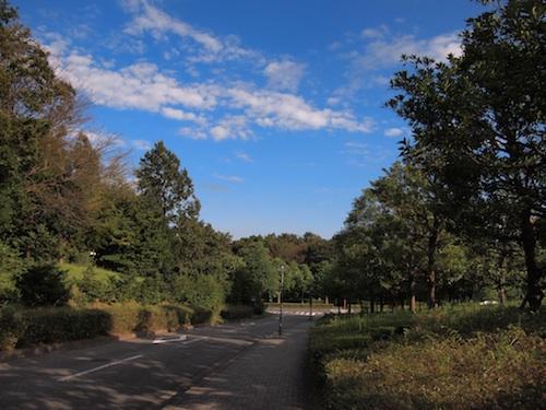 坂道の青空