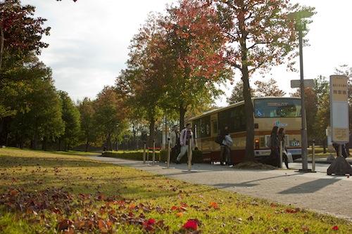紅葉のバス停