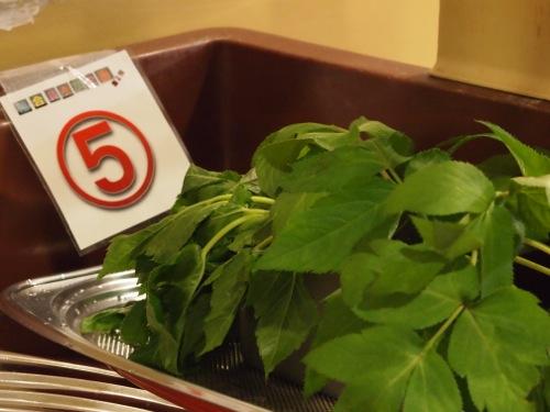 野菜向け(3)