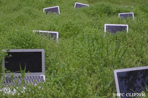 今年はMacBook Airが豊作だ。