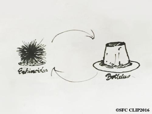 専門家によればウニからプリン、プリンからウニのサイクルが可能となる。