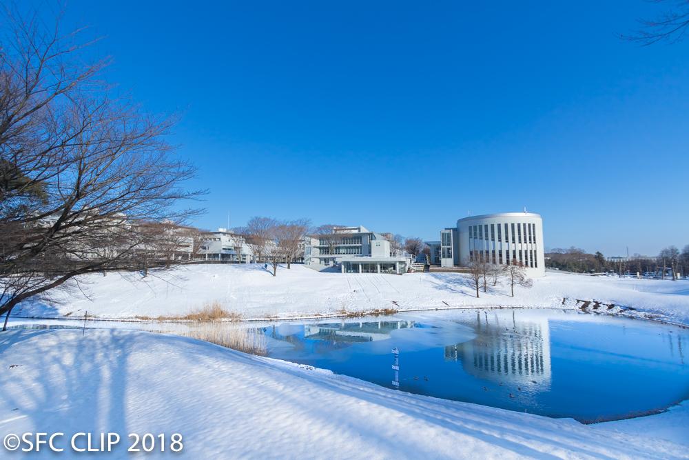 鴨池周辺も一面雪に覆われた