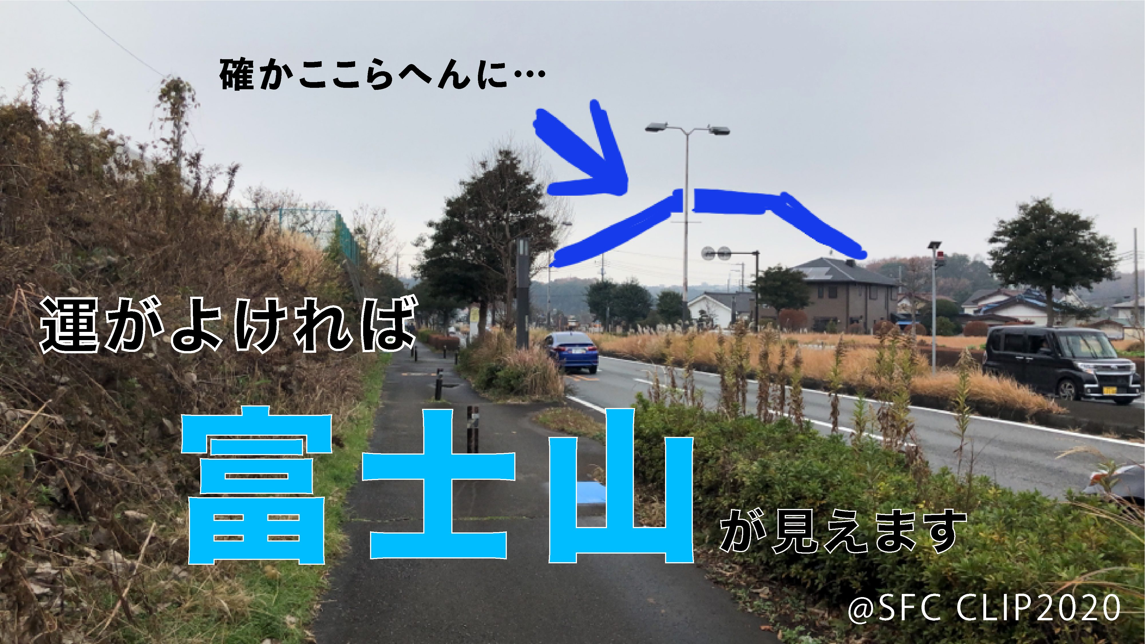 運が良ければ右奥に富士山が見えます